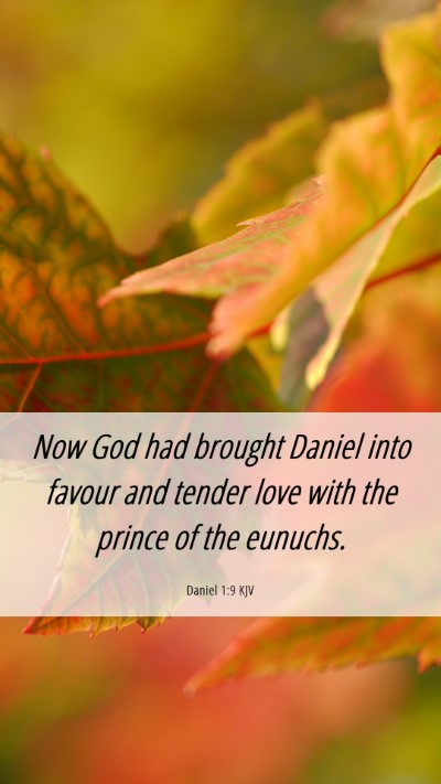 Picture 06 - Daniel 1:9 KJV Mobile Phone Wallpaper - Now God had brought Daniel into favour and tender - Mobile Bible Verse Wallpaper