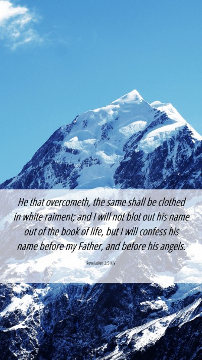 Picture 06 - Revelation 3:5 KJV Mobile Phone Wallpaper - He that overcometh, the same shall be clothed in - Mobile Bible Verse Wallpaper