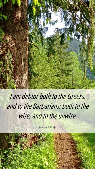 Picture 06 - Romans 1:14 KJV Mobile Phone Wallpaper - I am debtor both to the Greeks, and to the - Mobile Bible Verse Wallpaper