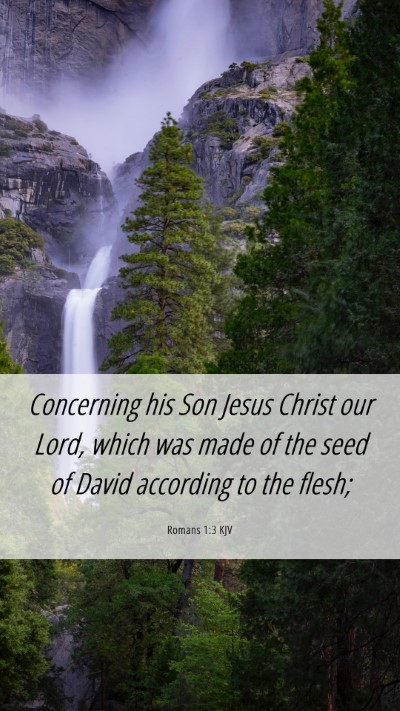 Picture 06 - Romans 1:3 KJV Mobile Phone Wallpaper - Concerning his Son Jesus Christ our Lord, which - Mobile Bible Verse Wallpaper