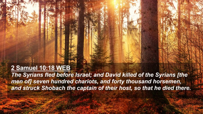 Picture 02 - 2 Samuel 10:18 WEB 4K Wallpaper - The Syrians fled before Israel; and David killed - 4K Wallpaper Bible Verse