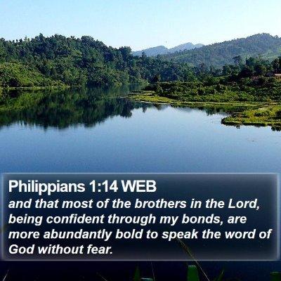 Philippians 1:14 WEB Bible Verse Image