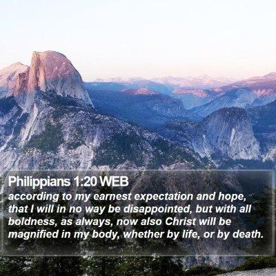 Philippians 1:20 WEB Bible Verse Image