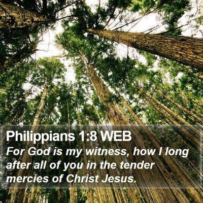 Philippians 1:8 WEB Bible Verse Image