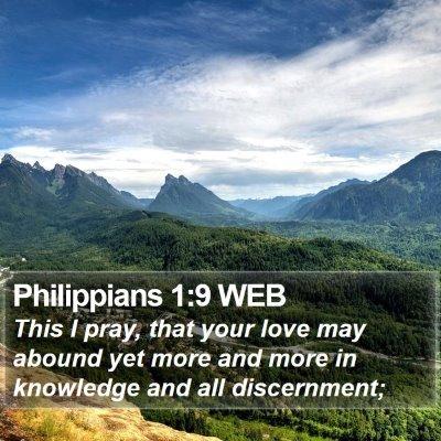 Philippians 1:9 WEB Bible Verse Image