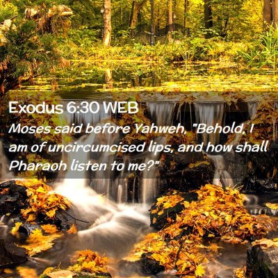 Picture 02 - Exodus 6:30 WEB - Moses said before Yahweh,