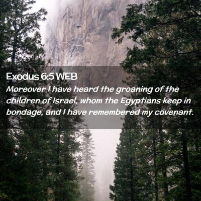 Picture 02 - Exodus 6:5 WEB - Moreover I have heard the groaning of the - Bible Verse Picture