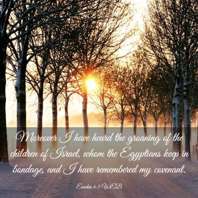 Picture 03 - Exodus 6:5 WEB - Moreover I have heard the groaning of the - Bible Verse Picture