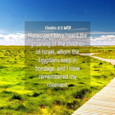 Picture 04 - Exodus 6:5 WEB - Moreover I have heard the groaning of the - Bible Verse Picture