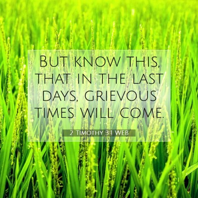 Picture 07 - 2 Timothy 3:1 WEB - But know this, that in the last days, grievous - Bible Verse Picture