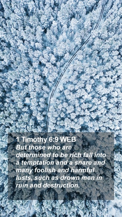 1 Timothy 6:9 WEB Mobile Phone Wallpaper - But those who are determined to be rich fall into - Mobile Bible Verse Wallpaper